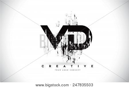 Vd V D Grunge Brush Letter Logo Design In Black Colors. Creative Brush Letters Vector Illustration.