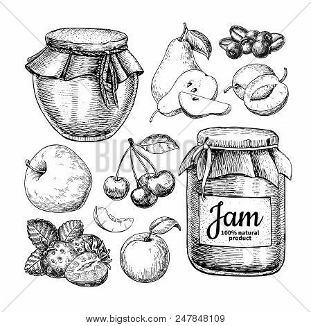 Fruit Jam Glass Jar Vector Drawing. Jelly And Marmalade With Strawberry, Cherry, Blueberry, Apple, P