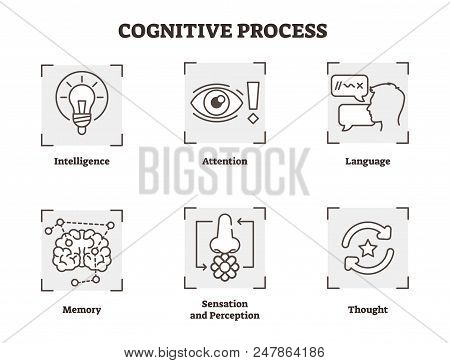 Vector Illustration Of Cognitive Process. Explained Types With Scheme Of Intelligence, Attention, La