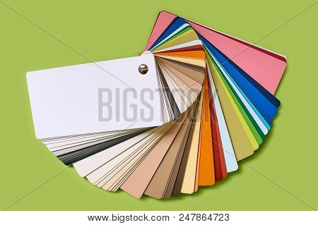 Close-up Of Color Palette Guide For Furniture Or Catalog Of Wood-chip Samples Isolated On Light Letu