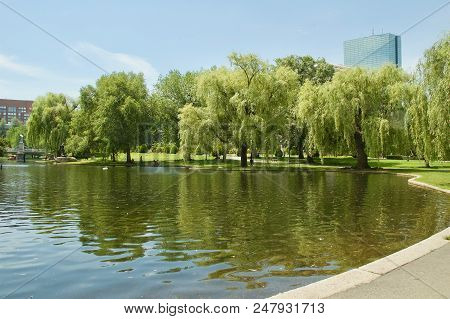 Gorgeous Views Of The Boston Public Garden In Boston, Massachusetts.