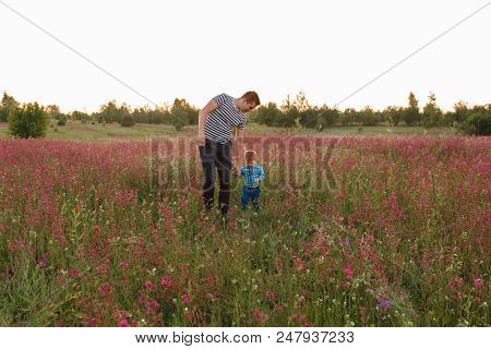 Rear View Of Father And Son Walking On Field At Sunset.