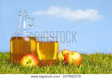 An ice cold flagon of fresh apple cider with pint glass amongst green grass in an orchard on a hot summers day.