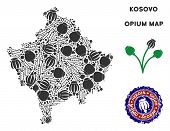 Opium addiction Kosovo map mosaic of poppy heads and syringes. Template for narcotic addiction campaign against heroin dependence. poster