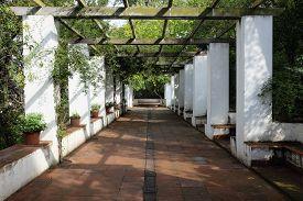 Pergola At Jardines De Laribal, Barcelona (catalonia, Spain).