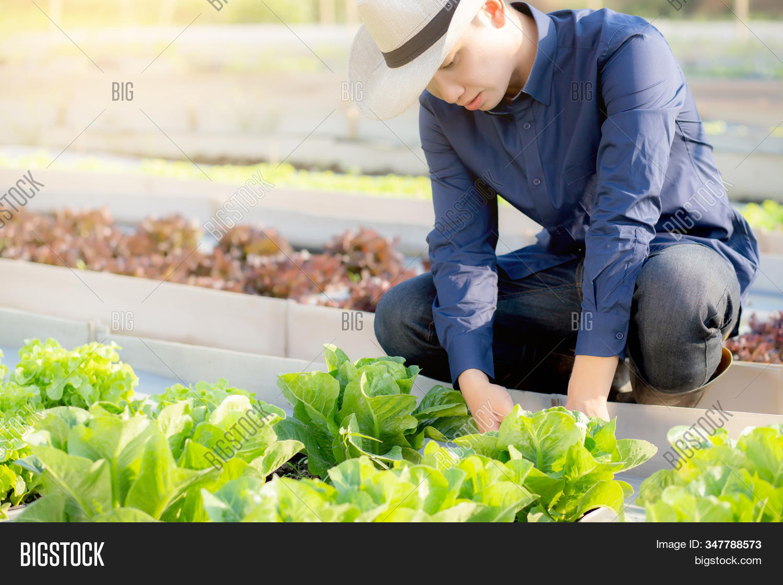 Young Asian Man Farmer Image Photo
