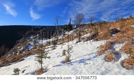 Sokoli Skala Rocks During Winter, Jeseniky, Czech Republic. January 2020.