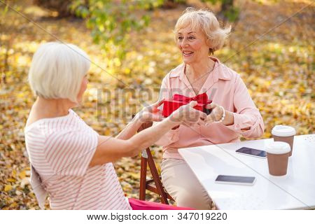 Smiling Woman Giving Her Old Friend A Birthday Gift