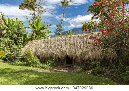 Aboriginal Thatched Roof Hut Is A Typical Abode Of The Indigenous Population Of Papua New Guinea.the