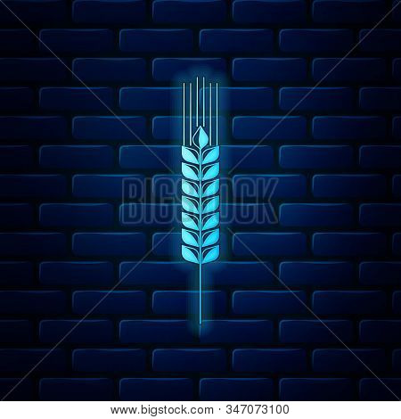 Glowing Neon Cereals Icon Set With Rice, Wheat, Corn, Oats, Rye, Barley Icon Isolated On Brick Wall