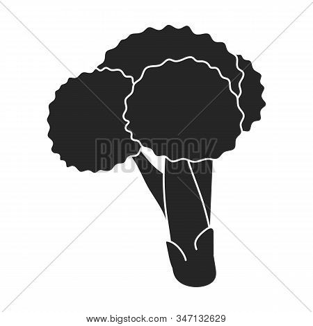 Cabbage Of Broccoli Vector Icon.black, Simple Vector Icon Isolated On White Background Cabbage Of Br