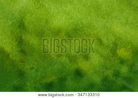 Landscape Green Watercolor Grass Field With Blur Trees Background,