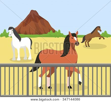 Horses Outdoor Behind Fence On Manege At Hippodrome, Ranch, Farm Stable Vector Illustration. Purebre
