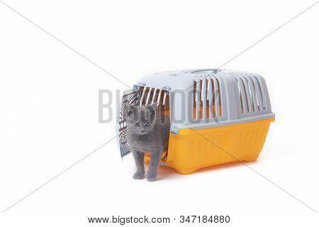 Carrier For Cats And Small Dogs Isolated On A White Background. Safe Transportation Of Animals, Arti