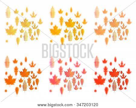 Set Of Autumn Leaves Or Fall Foliage Icons. Maple, Oak Or Birch And Rowan Tree Leaf. Falling Poplar,