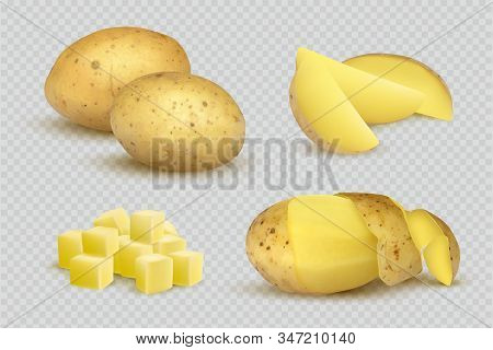 Potatoes Realistic. Fresh Natural Eco Vegetarian Food Slices Of Potatoes Vector Template. Vegetable