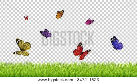 Spring Background. Realistic Grass, Color Flying Butterflies. Isolated Green Meadow Vector Illustrat