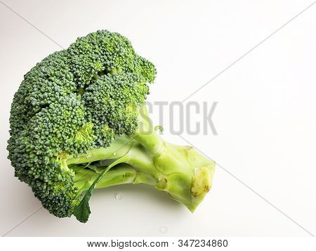 Fresh Broccoli Isolated On A White Background. Green Broccoli.