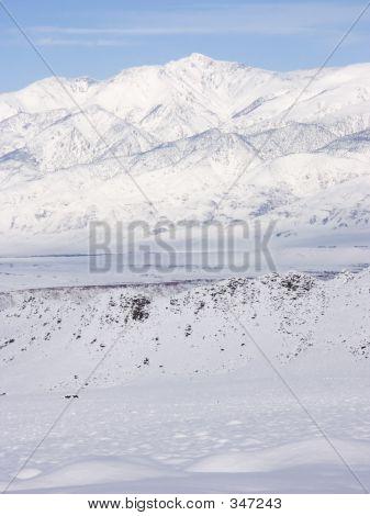white mtn peak, eastern sierra nevada, ca, usa poster