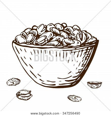Hand Drawn Illustration Of Pistachio Nuts In Bowl Isolated On White. Vector Ink Engraved Nuts Drawin