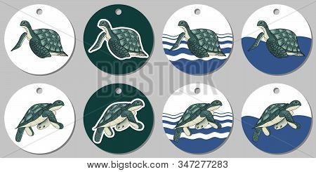 Round Sticker Template With Sea Turtle. Isolated Vector Illustration With White And Turquoise Stains