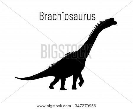 Brachiosaurus. Sauropodomorpha Dinosaur. Monochrome Vector Illustration Of Silhouette Of Prehistoric