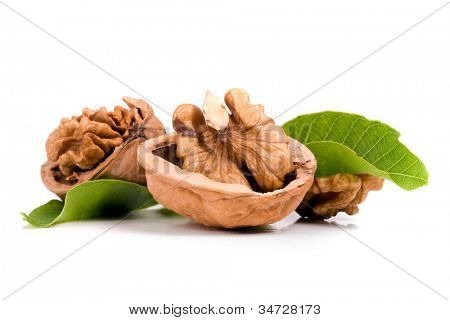 walnuts, isolated on white background poster