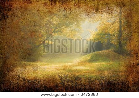 Morning Sunrays Falling On A Forest Glade On Grunge Background