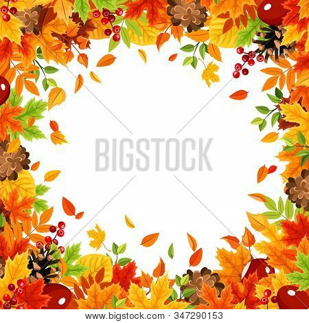 Vector Frame Background With Colorful Autumn Leaves On White.
