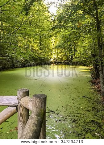 Beautiful Autumnal View Of Recreation Area At Lake Derin In Yedigoller National Park, Bolu City, Tur