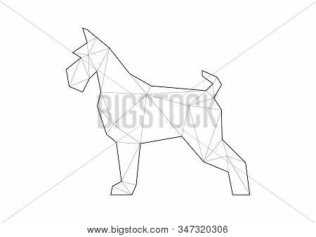 Low Poly Illustrations Of Dogs. Schnauzer Standing On White Background.