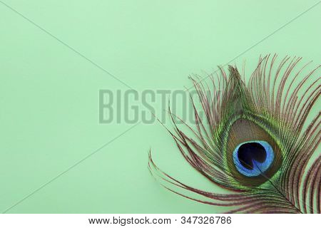 Detail Of Peacock Feather Eye On Dreen Background. Luxury Abstract Texture For Peafowl Wallpaper, Bl