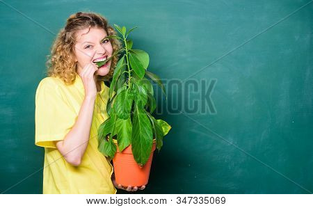 Botany Is About Plants Flowers And Herbs. Take Good Care Plants. Indoor Plants Are Tough Enough To W