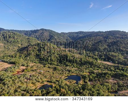 Aerial View Of The Verdant Hills With Trees In Napa Valley During Summer Season. Napa County, In Cal