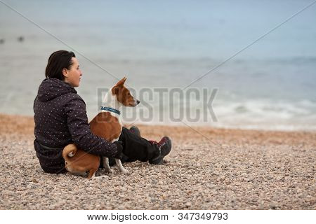 The Owner And His Dog Breed Basenji, Sitting Together On The Beach, Relaxed Meditating, Looking At T