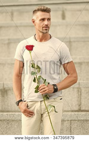 Life Is Too Short To Live Without Love. Handsome Guy With Rose Flower Romantic Date. Man In Love Rom