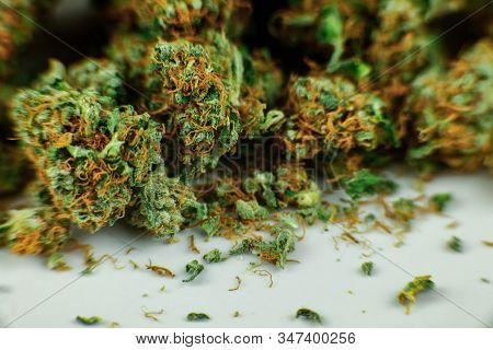 Selective focus closeup of dried Marijuana buds covered in crystals and wilted pistils. The cannabis bud lies on a white plate. Copy space bottom third. poster