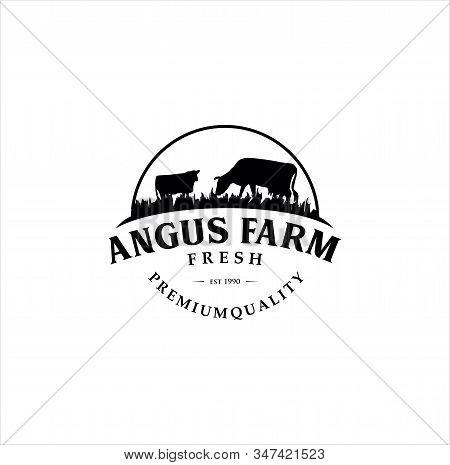 Black Angus Logo Design Template. Cow Farm Logo Design .