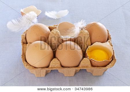 Brown Eggs And Feathers