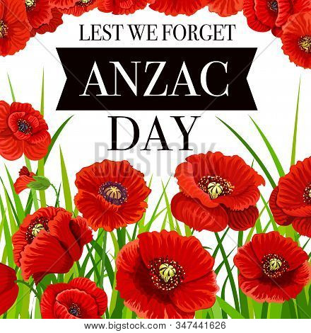 Anzac Day Poppy Flowers, National Remembrance Day Of Australia And New Zealand, Vector Poster. Anzac