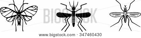 Mosquito Icon Isolated On Background  Repellent, Risk, Safety, Security, Skin, Sting