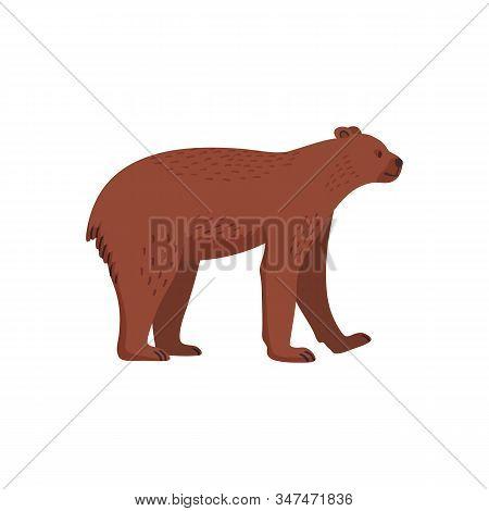 Extinct Animals. Short-faced Bear. Prehistoric Extinct American Bear. Flat Style Vector Illustration