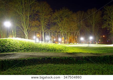 Illuminated City Park At Night. Artificial Lights Among The Trees.