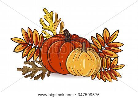 Autumn Leaves And Pumpkins Isolated On White Background. Seasonal Rowan And Oak Leaves With Gourds F