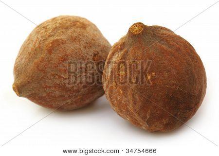 Medicinal Bahera fruits