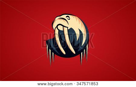 Vector Logos Walrus With Icicles. Red Background