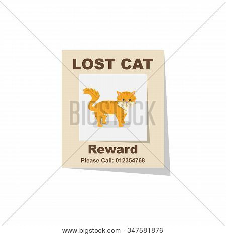 Lost Cat. Reward For The Find. Missing Poster. Lost Pet Poster. Sheet With The Announcement Of Disap
