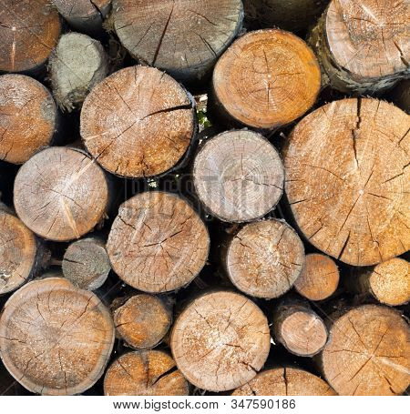 Stack Of Firewood. Woodpile. Wood Logs. Wood For The Winter. Firewood Background.