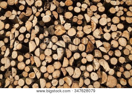 Stack Of Firewood. Woodpile. Wood For The Winter. Firewood Background.