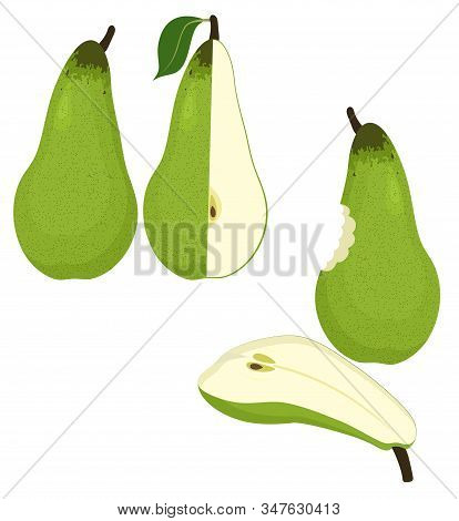 Pears Vector Illustration Isolated On White Background.